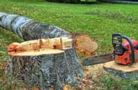 free Truro tree felling quotes